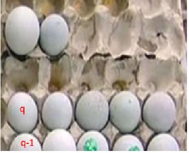 Numero de huevos