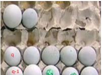 El número de huevos