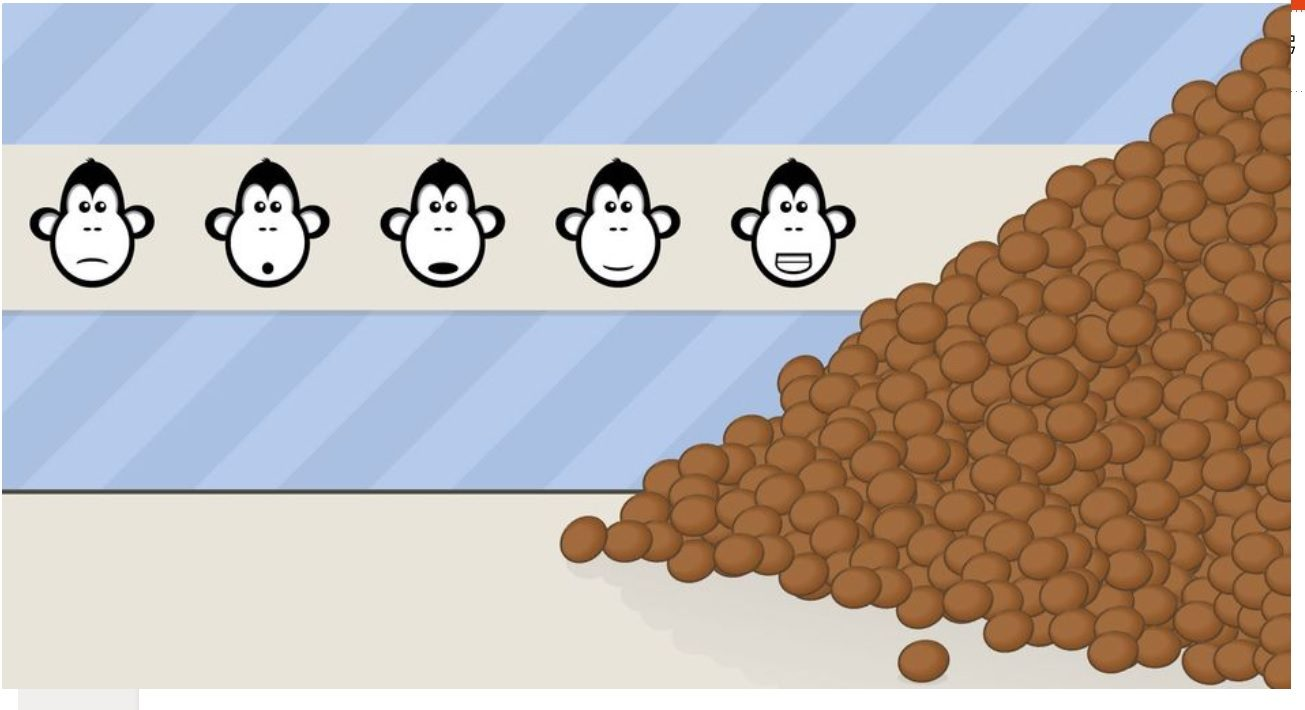 Cien monos y 1600 cocos